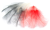 Перья CDC Feathers
