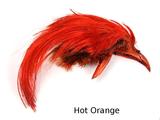 Загривок золотого фазана GOLDEN PHESANT CREST