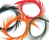 Биоты пера гуся Hareline