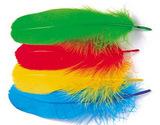 Гусиные перья WAPSI GOOSE SHOULDERS
