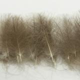 HENDS Перья CDC Feathers