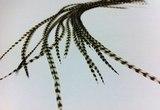 Отдельные перья из седла петуха long Flyinspector Grizzly