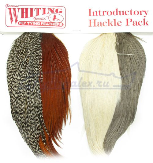 WHITING Набор 4 половинки скальпов Introductory Hackle Pack